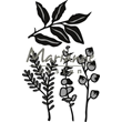 Marianne Design Dies - Herbs & Leaves